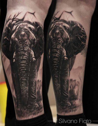 Elephant Silvano Fiato big