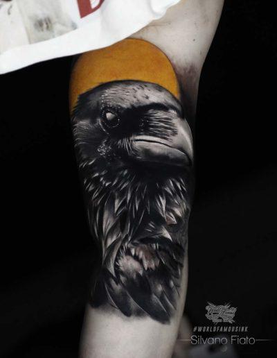 silvano-fiato-crow-corvo