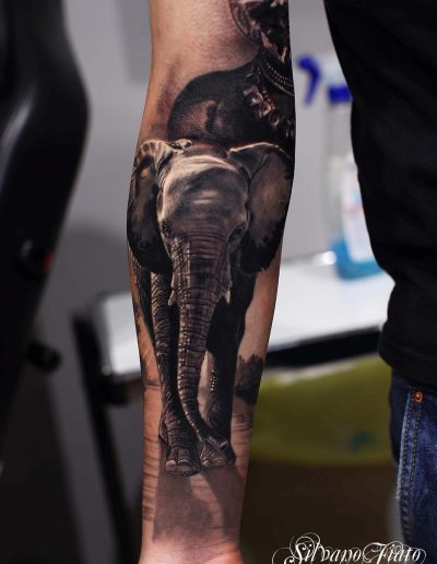 silvano fiato tattoo elephant healed